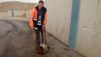 FANTEZI - O İzmir'in 'Çöpçüler Kralı'