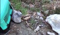 FETHIYE BELEDIYESI - Yaklaşık 30 Sokak Köpeğini Soğukta Ölüme Terk Ettiler