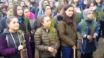 ORMAN İŞLETME MÜDÜRÜ - Kadirli'de Öğrenciler Fidan Dikti