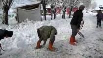 HEDIK - Kara Kışta Yolları 'Hedik'le Aşıyorlar