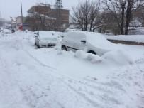 Karlıova'da Kar Ve Tipi Etkili Oluyor