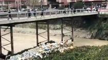 ASI NEHRI - Asi Nehri Üzerindeki Su Sümbülleri Temizleniyor