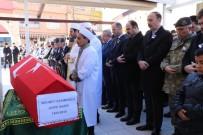 ŞANLIURFA VALİSİ - Kore Gazisi Son Yolculuğuna Uğurlandı