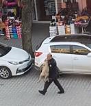 Polisten Yaralı Sokak Köpeğine Şefkat Eli