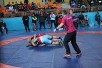 AVRUPA ŞAMPİYONU - Milli Güreşçi Ölmez Mindere Veda Etti