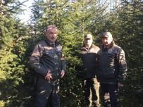 ÇAM AĞACI - Kaçak Ağaç Kesimine Hapis Cezası Var