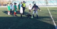 İLGİNÇ GÖRÜNTÜ - Sahaya Giren Köpek Ortalığı Birbirine Kattı