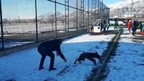 İLGİNÇ GÖRÜNTÜ - Sahaya Giren Köpek Renkli Görüntüler Oluşturdu