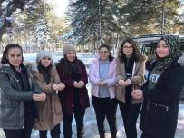 Bolvadin'de Sokak Hayvanları İçin 'Bir Avuç Mutluluk' Projesi Uygulandı