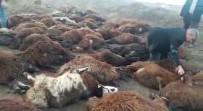 Iğdır'da 150 Koyun Telef Oldu