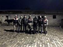 MEHMET ÖZDEMIR - Jandarma Ekipleri Kayıp Danaları Buldu