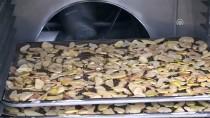ORGANİK MEYVE - Meyve Ve Sebzeler 'Termal Su' İle Kurutuluyor