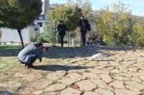 MERYEM ANA - Siverekli Fotoğraf Severler Eğil Ve Ergani'yi Gezdi