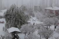 BUZ SARKITLARI - Başkale'de Dondurucu Soğuklar