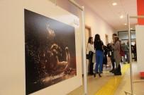 İZZET KERIBAR - 'Doğanın Enerjisi Fotoğraf Sergisi' Üniversitelilerin Beğenisine Sunuldu
