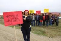 FİYAT ARTIŞI - İneklerine Kavuşamadan Kurdukları Çiftliğin Borcu Kapılarını Çaldı