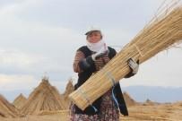 MEHMET KıLıNÇ - (Özel) Sultan Sazlığı'ndaki Kamış Hasadına Kuraklık Darbesi