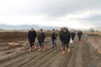 MURAT ŞAHIN - Erzincan'a Damızlık Düve Üretim Merkezi Kuruluyor