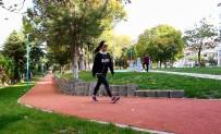 BEŞEVLER - Petunya Parkı Vatandaşların İlgi Odağı
