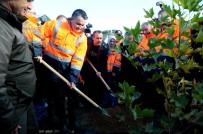 ORMAN GENEL MÜDÜRLÜĞÜ - Bakan Pakdemirli Açıklaması 'Yanan Ormanlara Villa Yapılamaz, Bu Alanlar Kanunla Korunuyor'