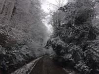 ORMANA - Ormancı Gözüyle Yenice Ormanlarında Kar Manzarası