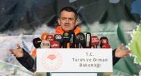 ORMAN GENEL MÜDÜRLÜĞÜ - 'Yanan Ormanlara Villa Yapılamaz'
