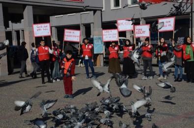 Balıkesirli Genç Kızılaycılar Dünya Gönüllüler Gününü Kutladı