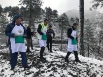 ŞEREF AYDıN - Kaymakam Kar Çamur Demedi Ağaç Dokunu Dikti