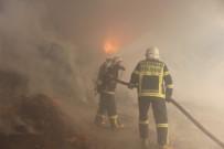 İTFAİYE MÜDÜRÜ - Besi Çiftliğinde Yangın
