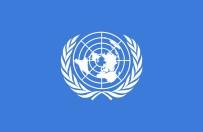 BEŞAR ESAD - Birleşmiş Milletler'den Suriye Çağrısı