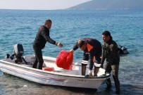 YALıKAVAK - 'Denize En Çok Mavi Yakışır'