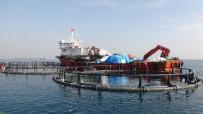 ÇEVRE BAKANLIĞI - Silifke Sahilindeki Balık Çiftlikleri Kaldırıldı