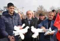 Bin Güvercin Mehmetçik İçin Havalandı