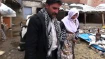 GÖKPıNAR - Çalınan İnek Götürülürken Güvenlik Kamerasına Yakalandı