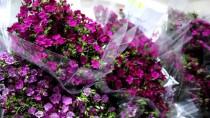 Çiçek Mezatlarında Sevgililer Günü Hareketliliği