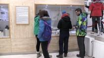 DEMIRKENT - Kars'ta Sergilenen Dinozor Fosiline Yoğun İlgi