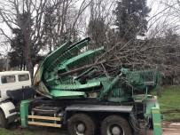 SARIYER - Maçka Parkındaki Ağaçlar Sökülmeye Başlandı