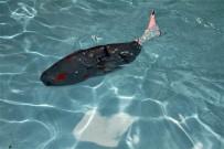 BIYOMIMETIK - Su Altının Yeni Kaşifi Açıklaması Akıllı Robot Balık