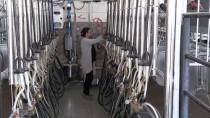 AYRIMCILIK - TKDK'den Yatırımcıya 5 Milyar Lira Hibe