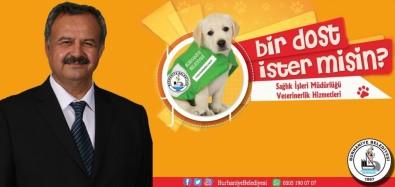 Başkan Uysal, '14 Şubat'ta Sevdikleriniz İçin Bakım Evinden Can Dostu Sahiplenin'