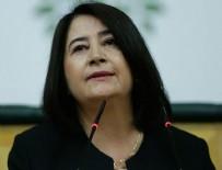 HDP - Eski HDP Eş Genel Başkanı Serpil Kemalbay gözaltına alındı