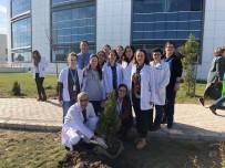 TAFLAN - Kırklareli Devlet Hastanesinde Peyzaj Çalışması