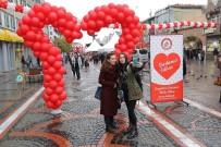 ÇEKIM - 14 Şubat'ta Sevgi Ve Yalnızlık Dile Geldi