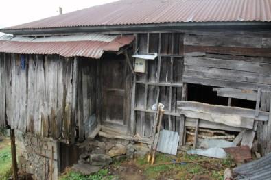 Deniz Yıldızı Derneği Ev Sahibi Yapmayı Sürdürüyor