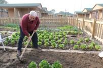 HOBİ BAHÇESİ - Hobi Bahçesi Emeklilerin Vazgeçilmezi Oldu
