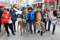 ERSIN YAZıCı - Minik Öğrenciler 1 TL'ye Kartpostal Satarak Sokak Hayvanlarını Doyurdu