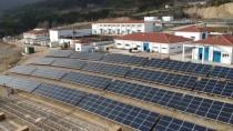 ELEKTRİK ENERJİSİ - 'Tabiatın Kalbi' Bolu'da Güneş Enerjisinden İçme Suyu