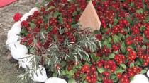 KEMAL ÇEBER - Afrin Gazisi, Şehit Komutanının Kabrini Ziyaret Etti