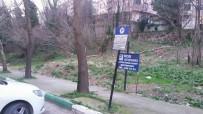 CEMIL AYDıN - Aydın Açıklaması 'Çekirge Devlet Hastanesi Karşısındaki Arazi Sosyal Donatı Alanı Yapılsın'