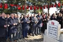 ÖMER TORAMAN - Dünya Şampiyonu Ölüm Yıl Dönümünde Memleketi Tokat'ta Anıldı